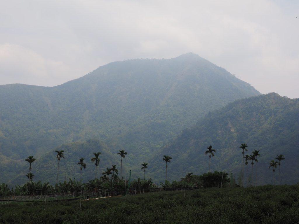 霧に包まれている雄大な中国の山々