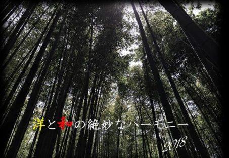 木々の生い茂った森